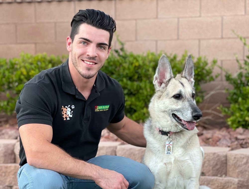Certified Expert Dog Trainer and Dog Behavioral Therapist