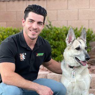 Dog Training Houston TX profile